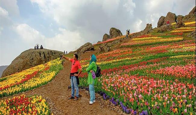 گل های اردیبهشتی در پایتخت لاله های ایران