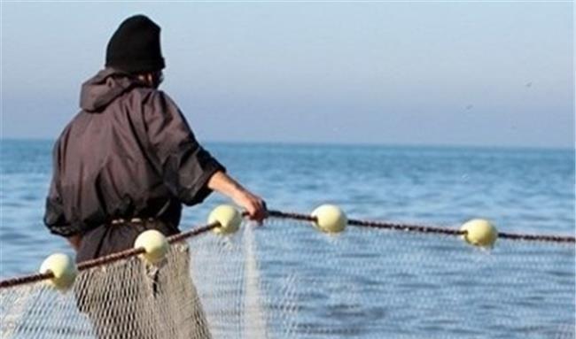 انتقام سخت یک ماهی کوچک از ماهیگیر! + عکس