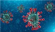 آمار مبتلایان و قربانیان ویروس کرونا، امروز شنبه 24 آبان 99 اعلام شد